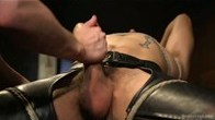 Gorgeous Hunk with Big Cock Edged in Leather