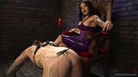 TS Foxxys Dungeon Pain Slave