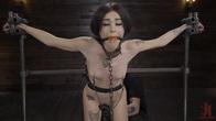 Fresh Meat: Rosalyn Sphinx