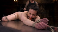 Casey Calvert: Bondage, Torment, and Sexual Servitude