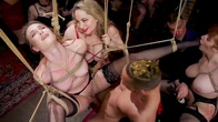 Babe BDSM Swinger Becomes Sexual Submissive For The House